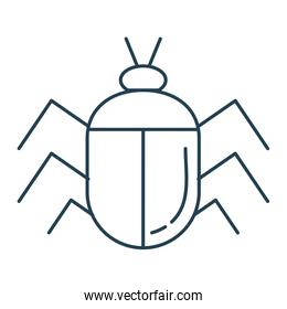 bug insect isolated icon