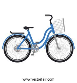 bicycle with basket isolated icon