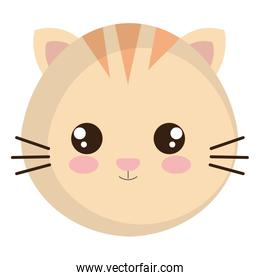 cute and little cat head character