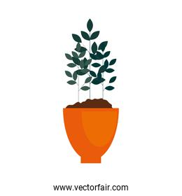 houseplant in pot natural icon