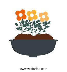 flowers houseplant in pot natural icon