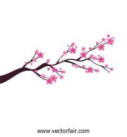 chinese tree branch with flowers