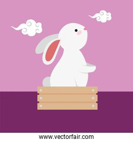cute rabbit in wooden box character