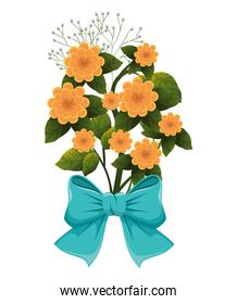 cute flowers with bown