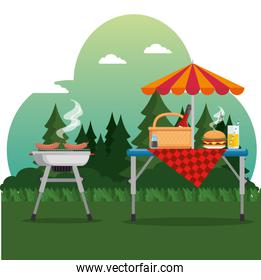 summer picnic outdoor barbecue grill
