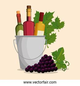 set red wine bottles and grapes