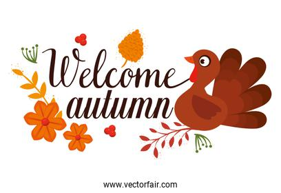 welcome autumn card with turkey