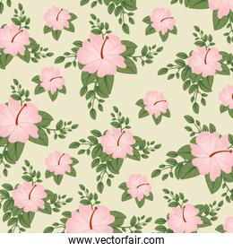 cute flowers plants with leaves background