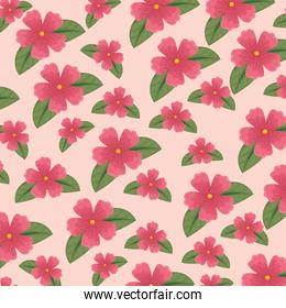 cute flowers with nature leaves background