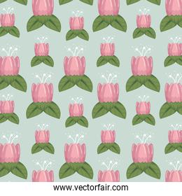 floral style with cute petals and leaves background