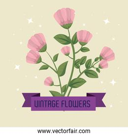 flowers plants with leaves and petals design