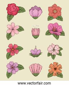 set flowers plants with leaves and petals style