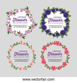 set floral plants with leaves border and message