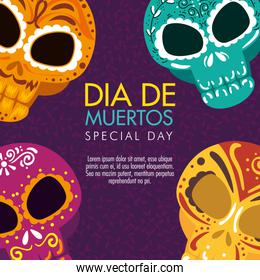 day of the dead and skulls with ornamental decoration