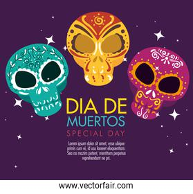 skulls decoration to day of the dead celebration