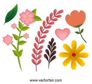 set flowers plants with branches leaves and heart