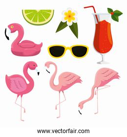 set tropical flamingos with sunglasses and cocktail