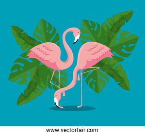 tropical flamingos with exotic leaves plants