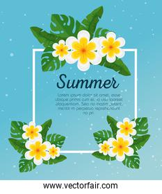 summer card with tropical flowers and exotic leaves