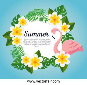 summer label with flemish and flowers with leaves