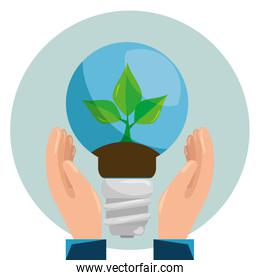 ecology plant inside save bulb in the hands