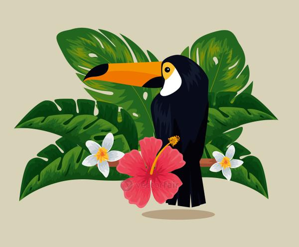 tropical flowers plants with toucan and leaves