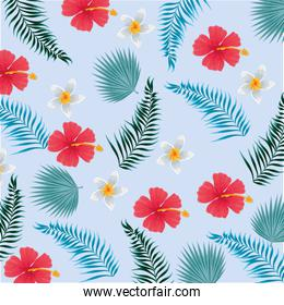 tropical flowers with branches leaves background