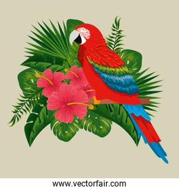 exotic parrot with flowers plants and leaves