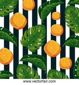 exotic oranges fruits with leaves background