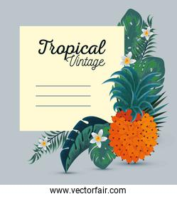 card with exotic pineapple and flowers with leaves