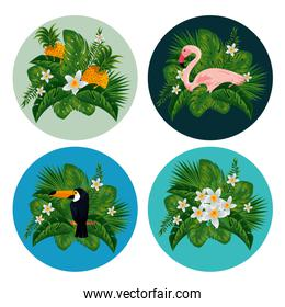 set labels with exotic animals and fruits