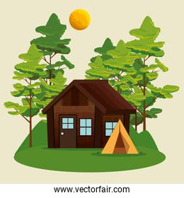 nature trees with cabin and camp landscape