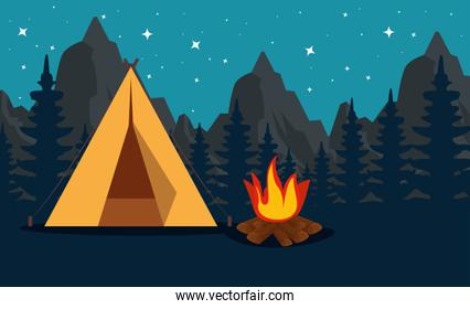 pines trees with mountains and camp with firewood