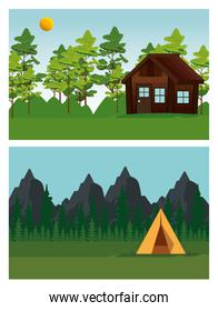 set of cabin and camp around the nature trees and mountains