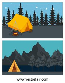 set of camp with firewood food and pines trees