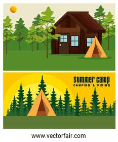 set of cabin and camp with pines trees landscape