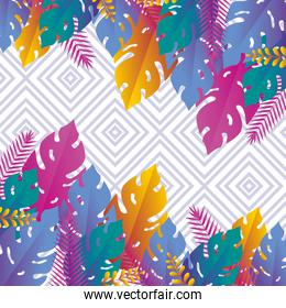 exotic leaves plants with square abstract background