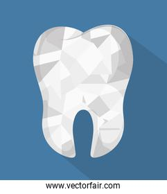 tooth human seal icon