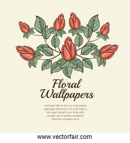 floral wallpapers design isolated