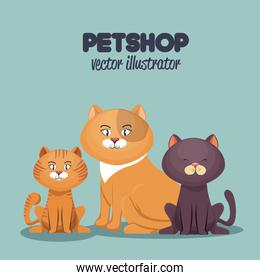 pet shop cats and dog care mascot