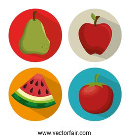 collection fresh apple tomato watermelon and pear