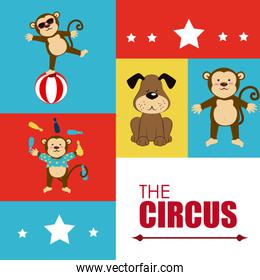 Circus design over colorful background vector illustration