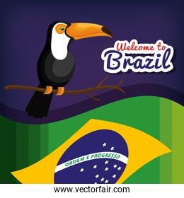 welcome to brazil poster