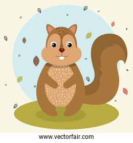 cartoon squirrel wild animal with falling leaves landscape nature