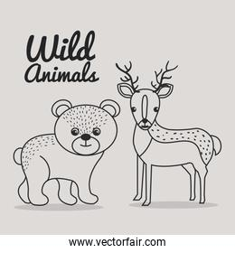 hand drawn bear and deer uncolored wild animals over white background