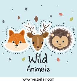 cute wild animals sticker leaves fall
