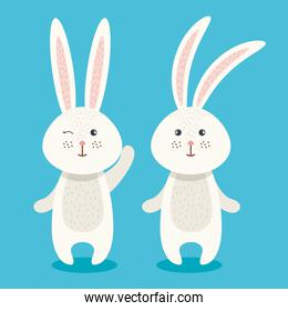 cute rabbits couple characters