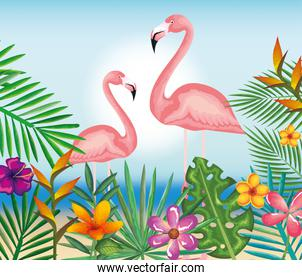 tropical and exotic garden with flemish