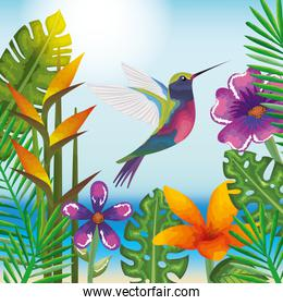 tropical and exotic garden with hummingbird