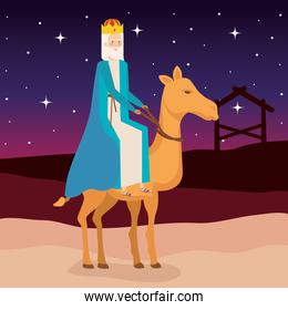 wise man in camel manger characters